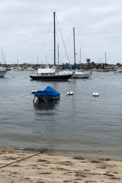 A view of the harbor from Balboa Island.