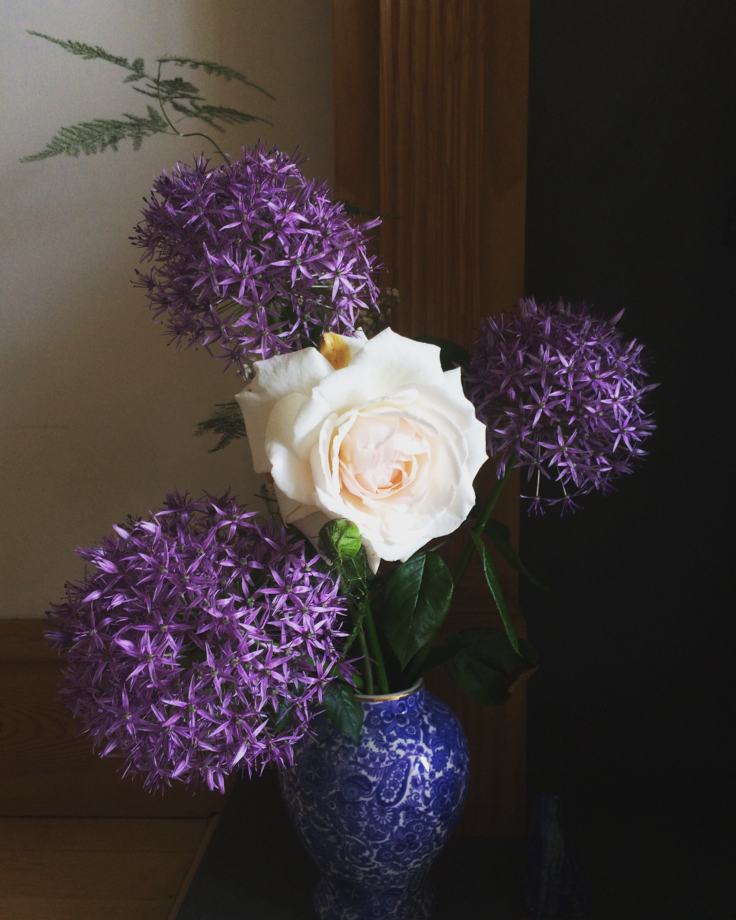 alliums and roses