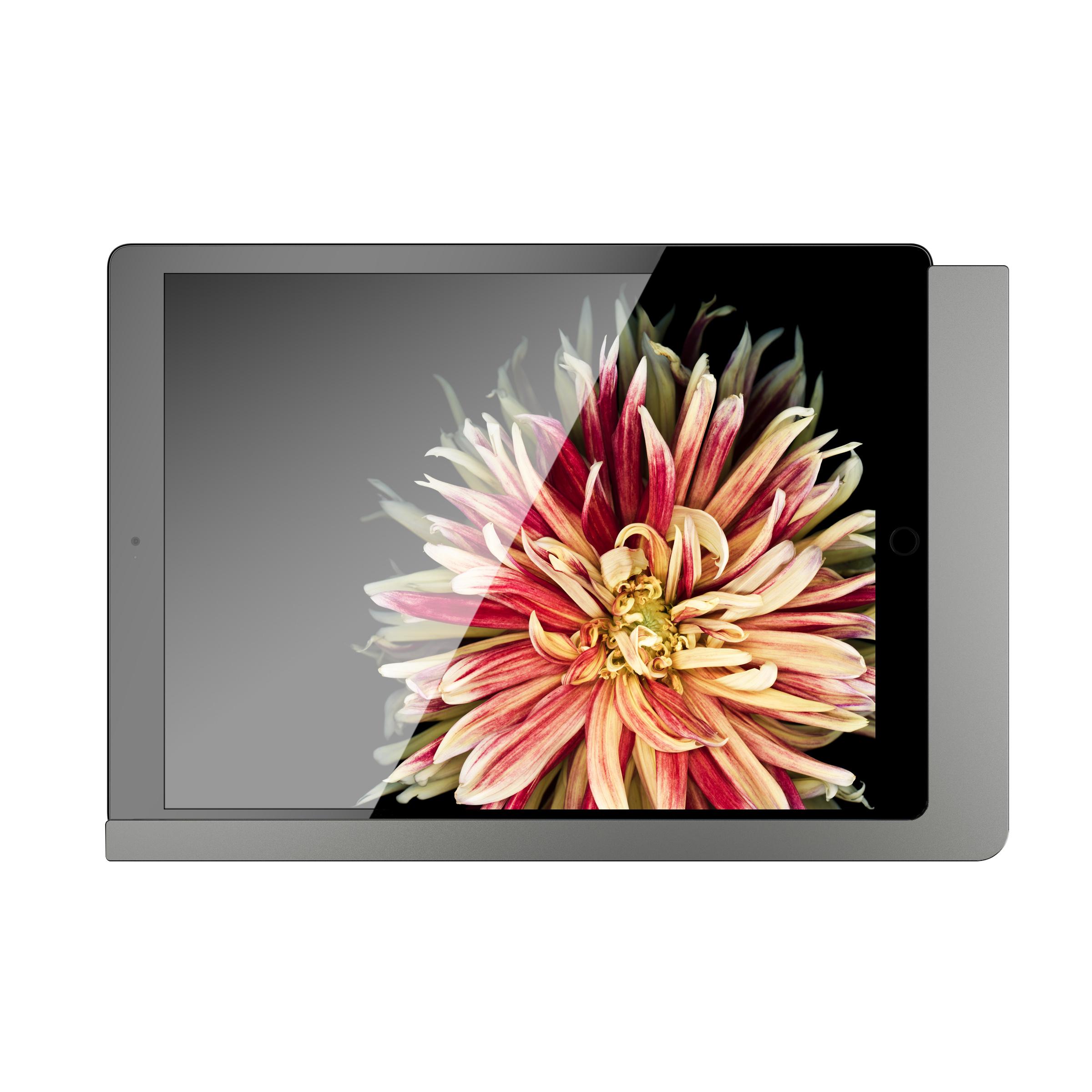 Viveroo Free Flex Dark Steel iPad Mount Stand Dock