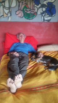 Chuck and Chico napping.