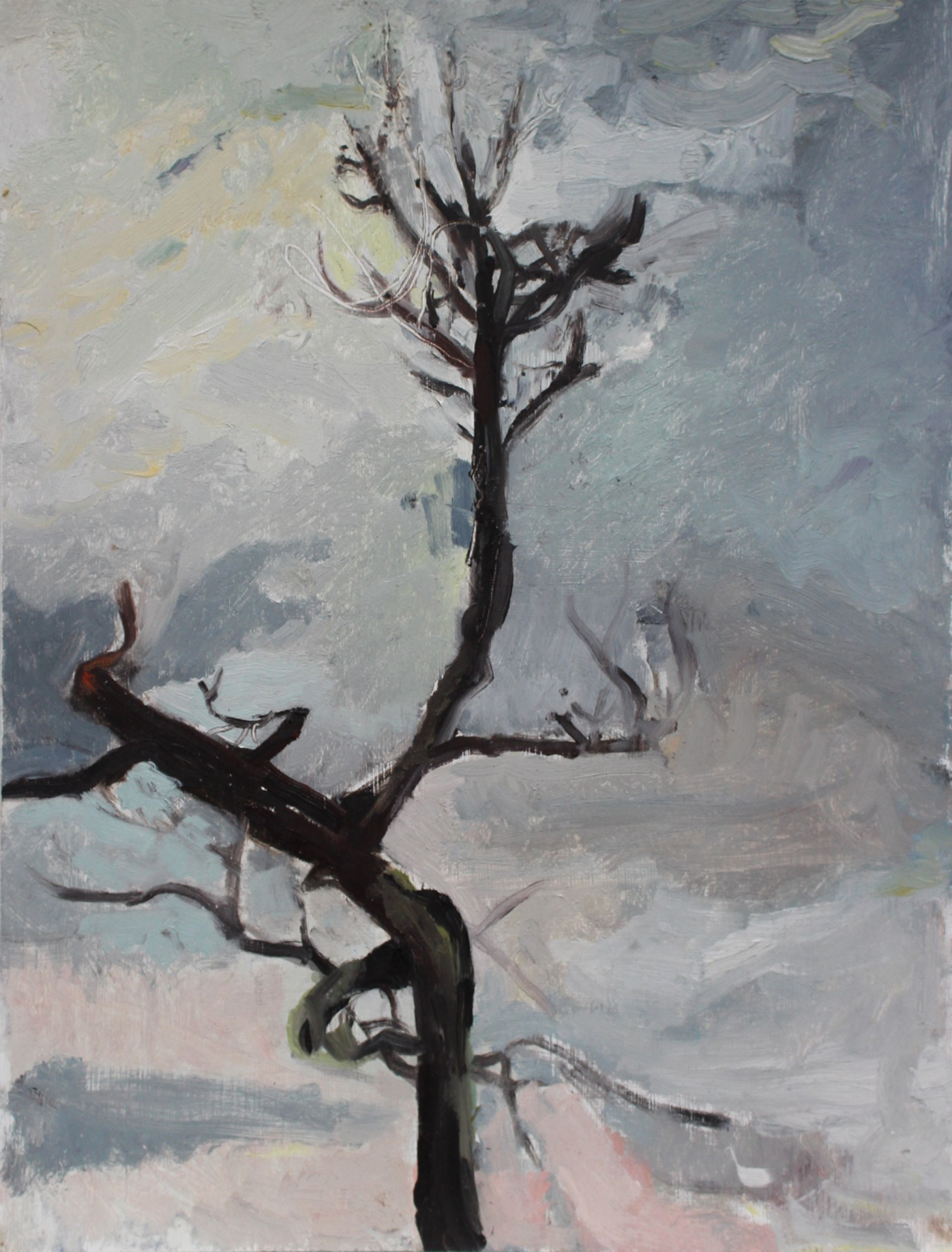 Favorite Tree (Winter)
