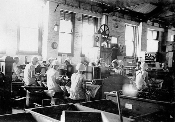 Cigar Making at Michelides Tobacco Factory, 1928