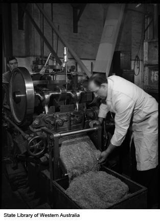Examining tobacco leaves, Michelides Ltd, 1951