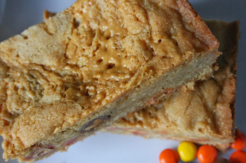 peanut butter lovers blondies pack a punch of salty and sweet