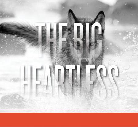 Big Heartless_squarish_new2.jpg