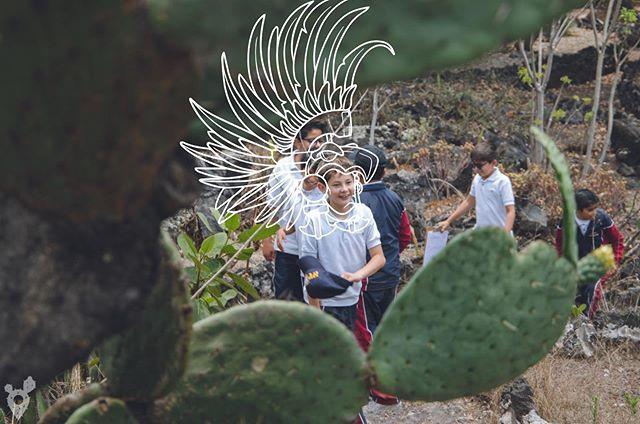 Aunque tú no te des cuenta, cuando viajas conectas con tus raíces.🌵 #Ximbala