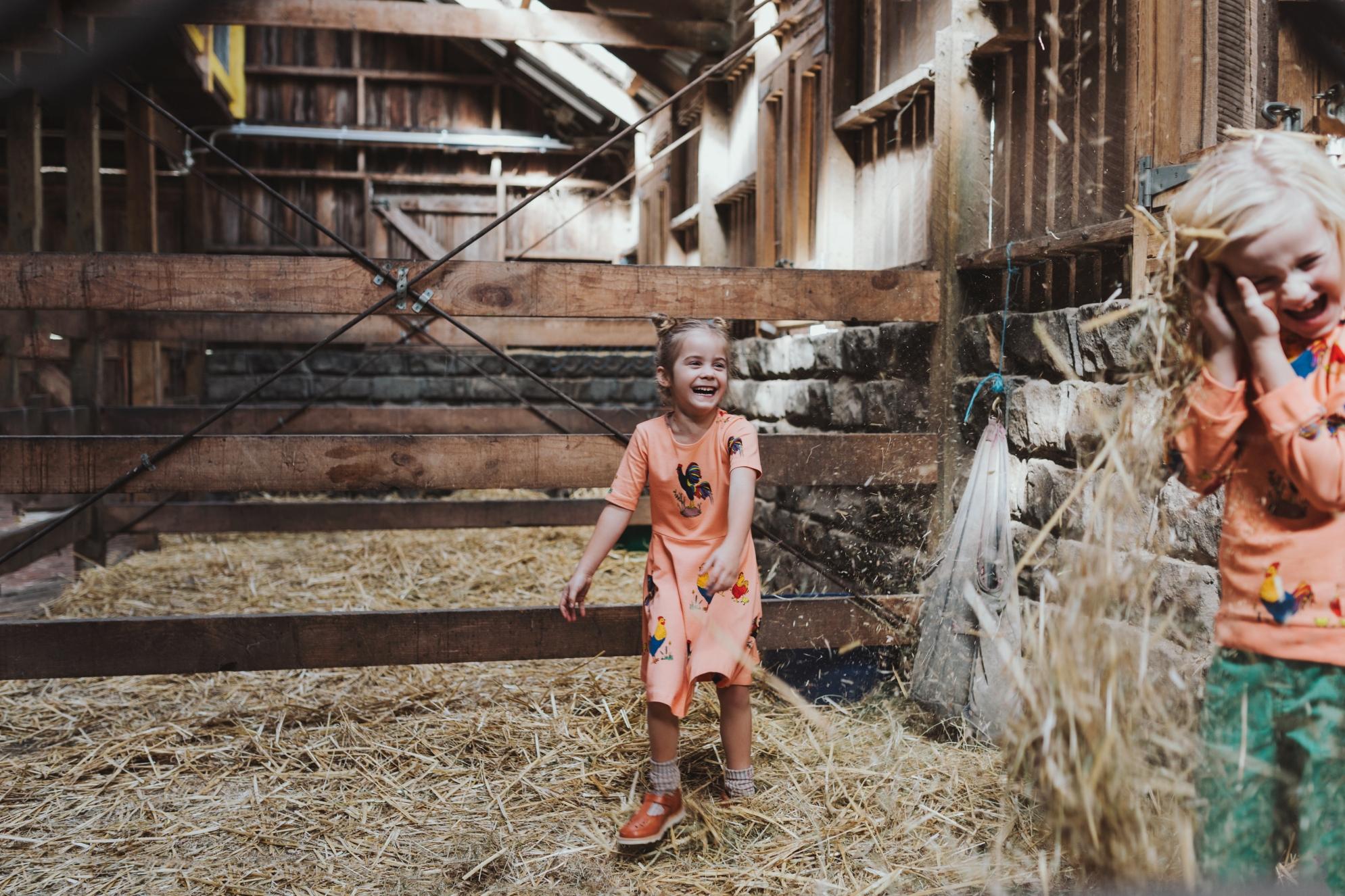 hay-fight-kids-commercial-photographer-siida-tasmania.jpg