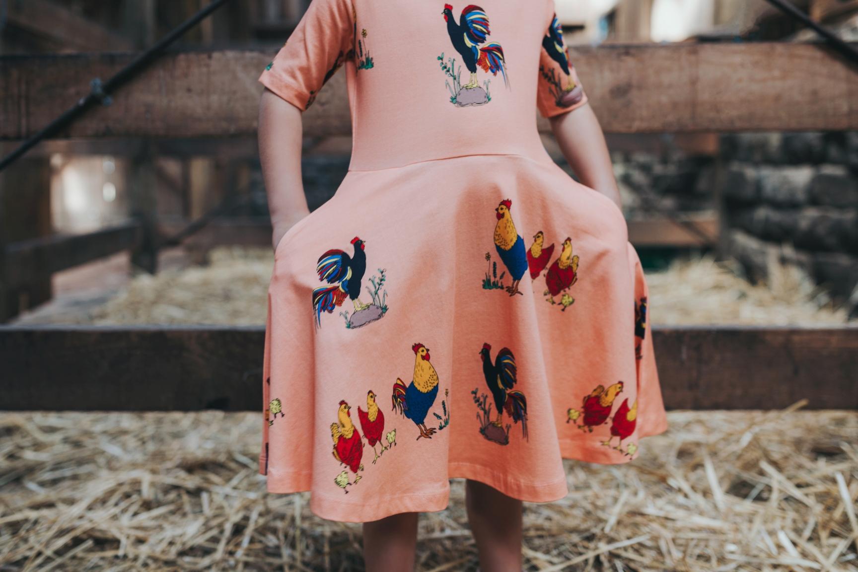 girl-chicken-dress-photographer-siida-hobart-fashion.jpg