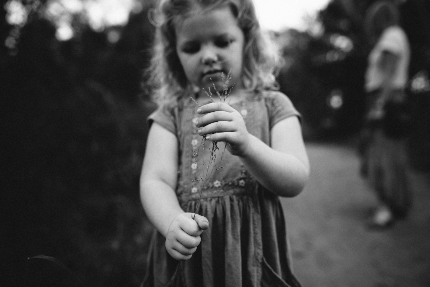 Girl plays with grass during natural photography session with her family.