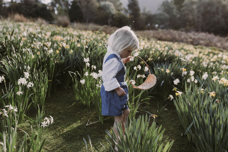 Girl picks flowers in beautiful field in Tasmania by Siida Photo