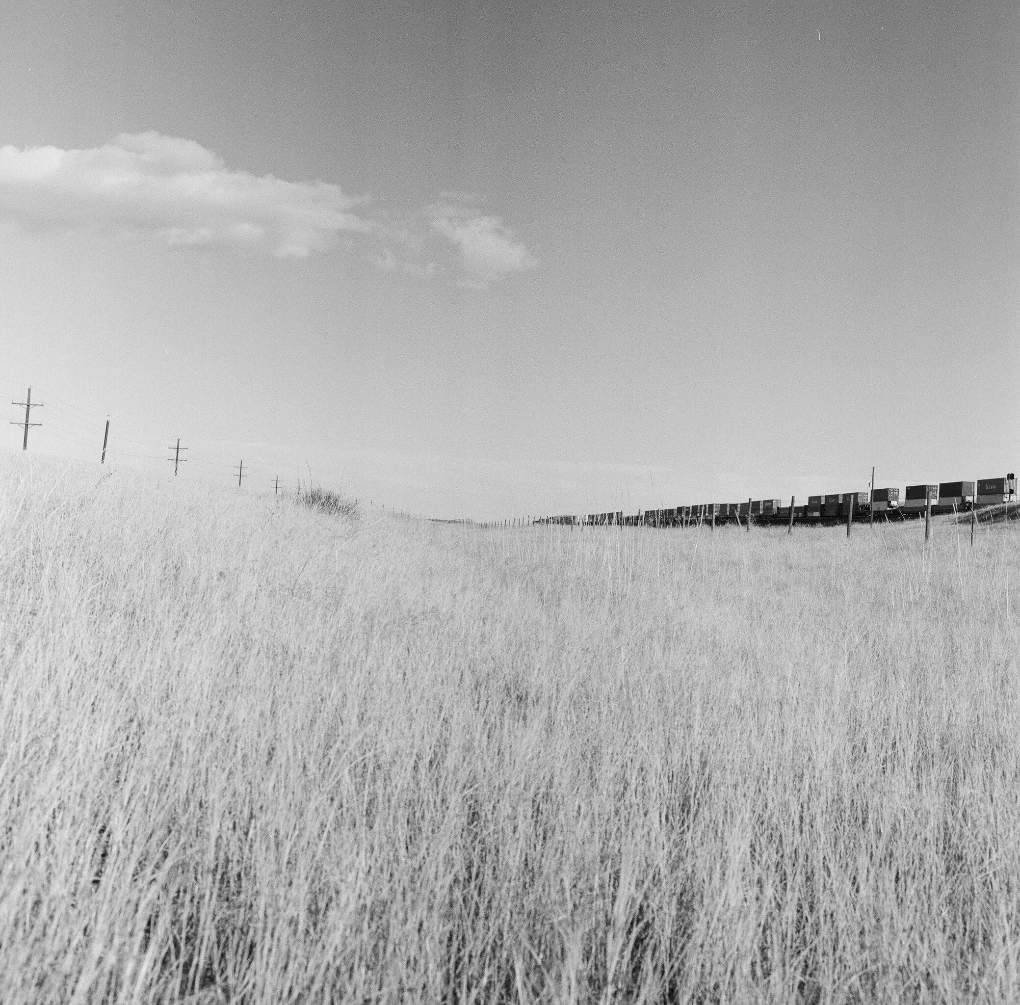 Cheyenne, WY, 10/25/16 ©Sarah Windels