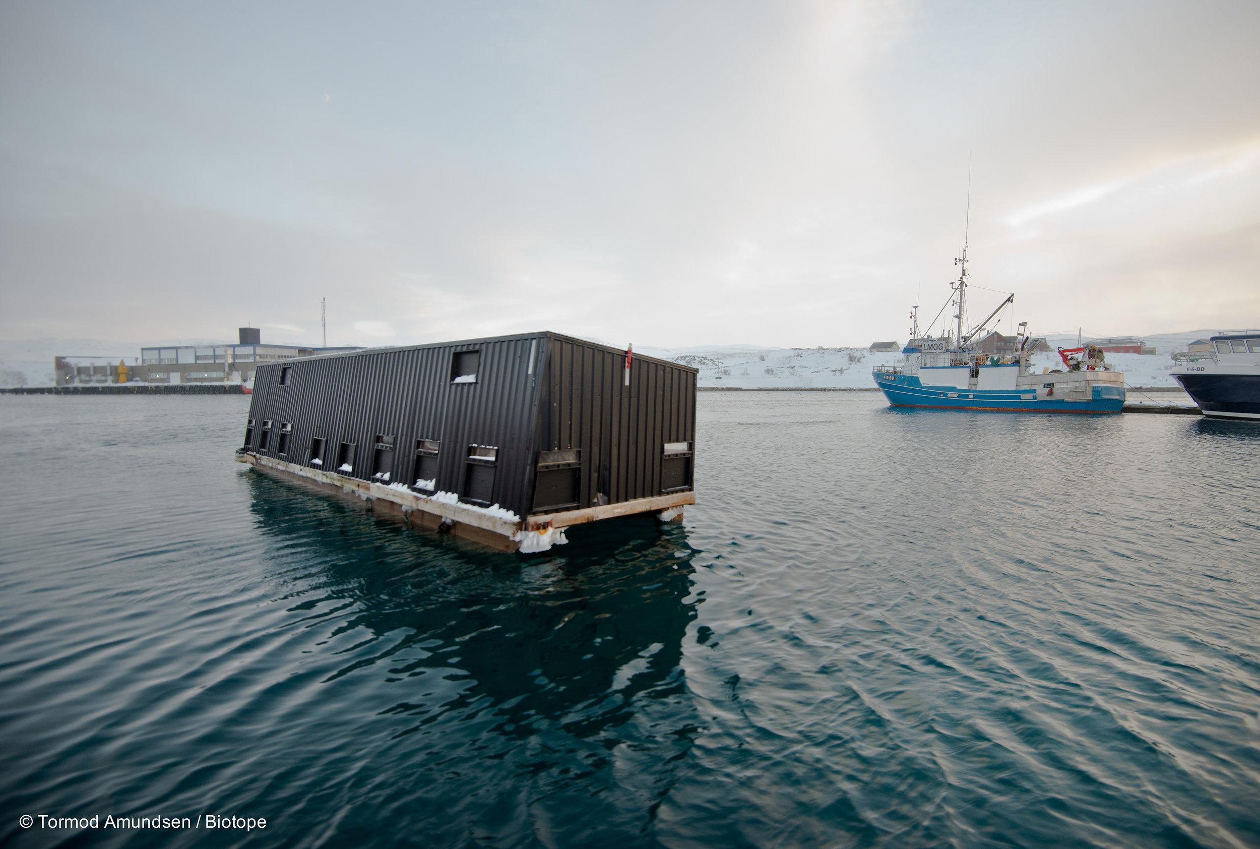 Floating photohide in Båtsfjord