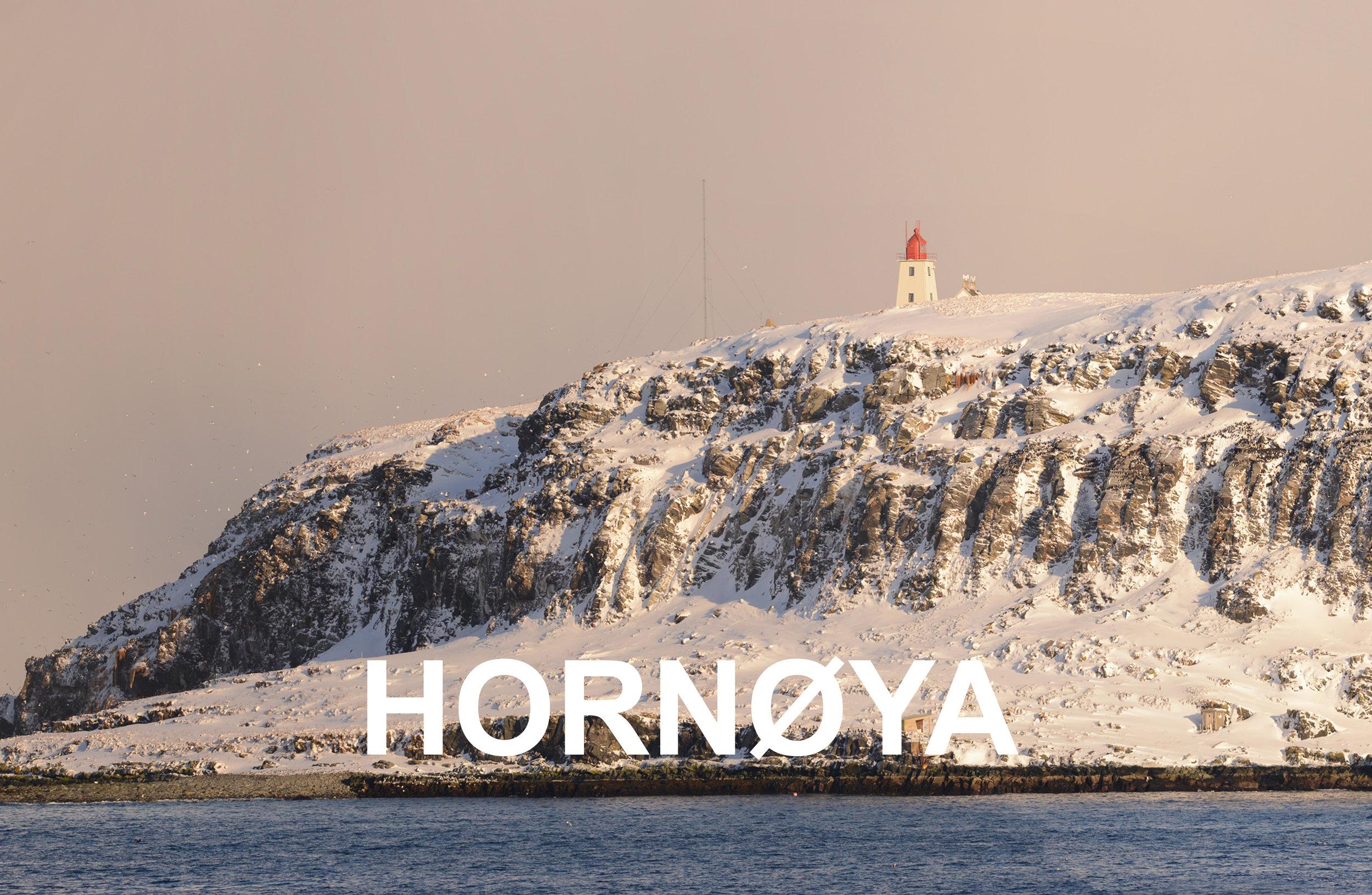 Hornøya Varanger areal copyright Biotope