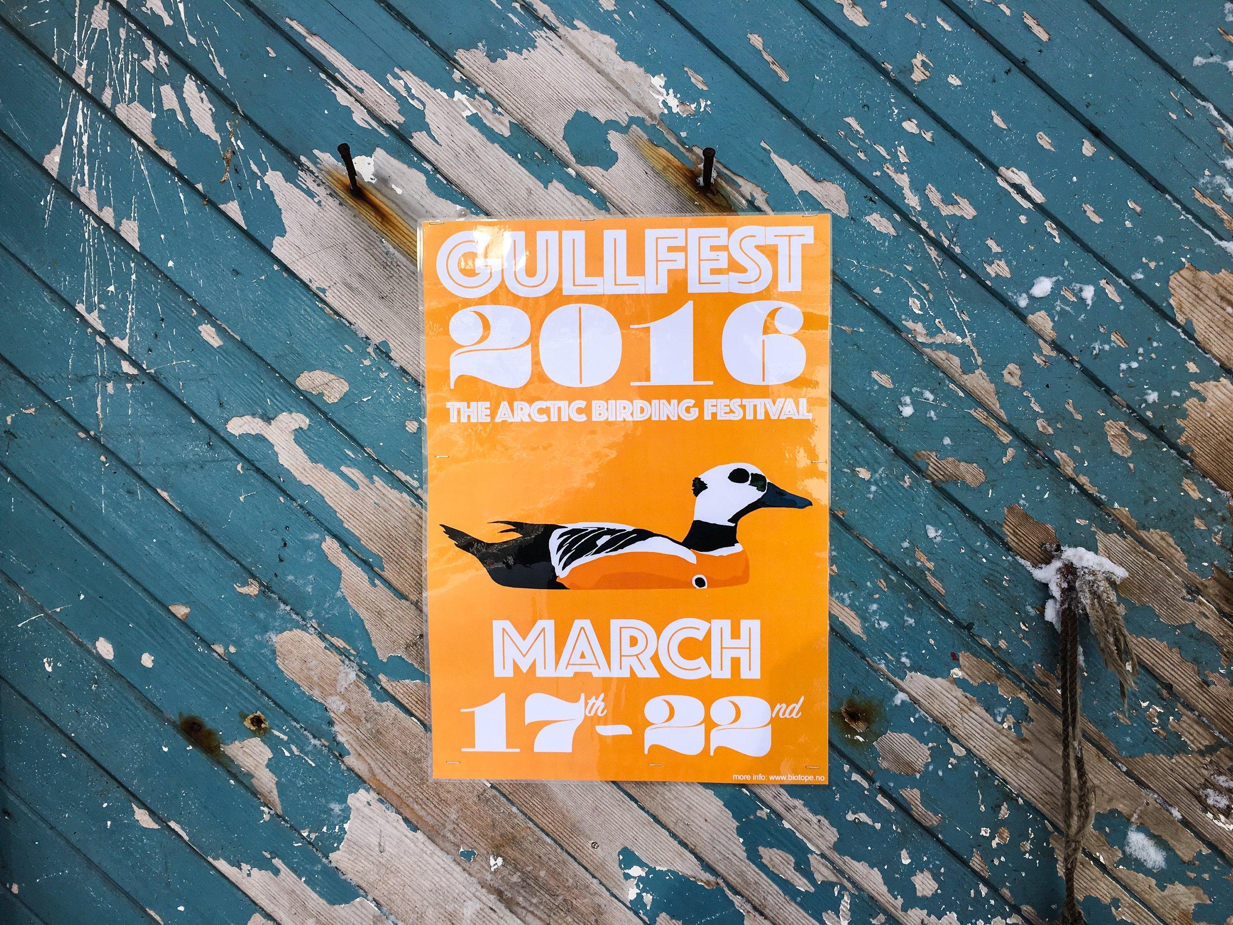 Gullfest 2016 poster on wall at østre molokrok IMG_2444 © Biotope.JPG