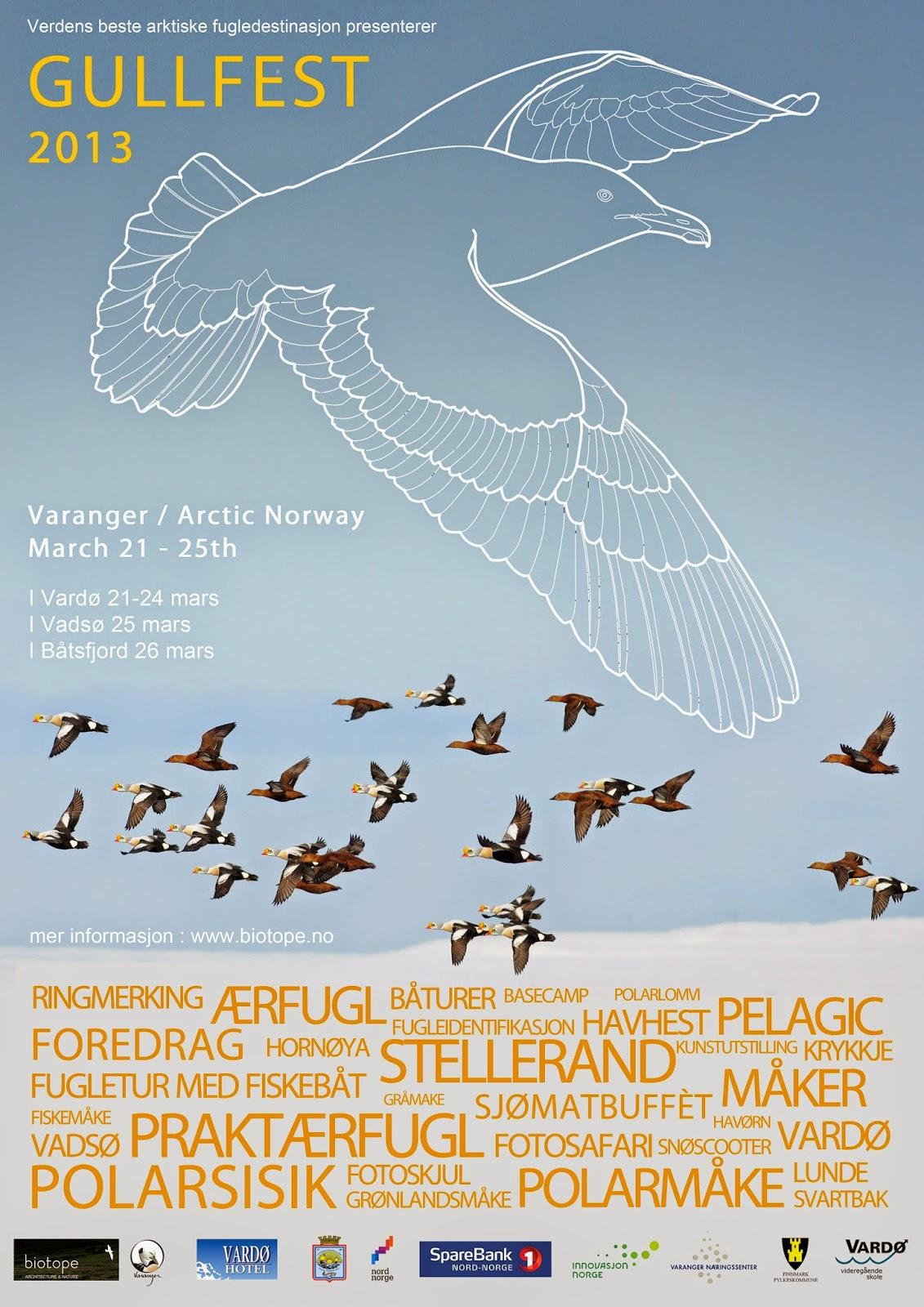 Gullfest 2013 Poster.jpg
