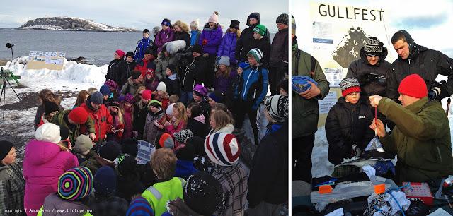 Gullfest school day apr 2012 Amundsen Biotope.jpg