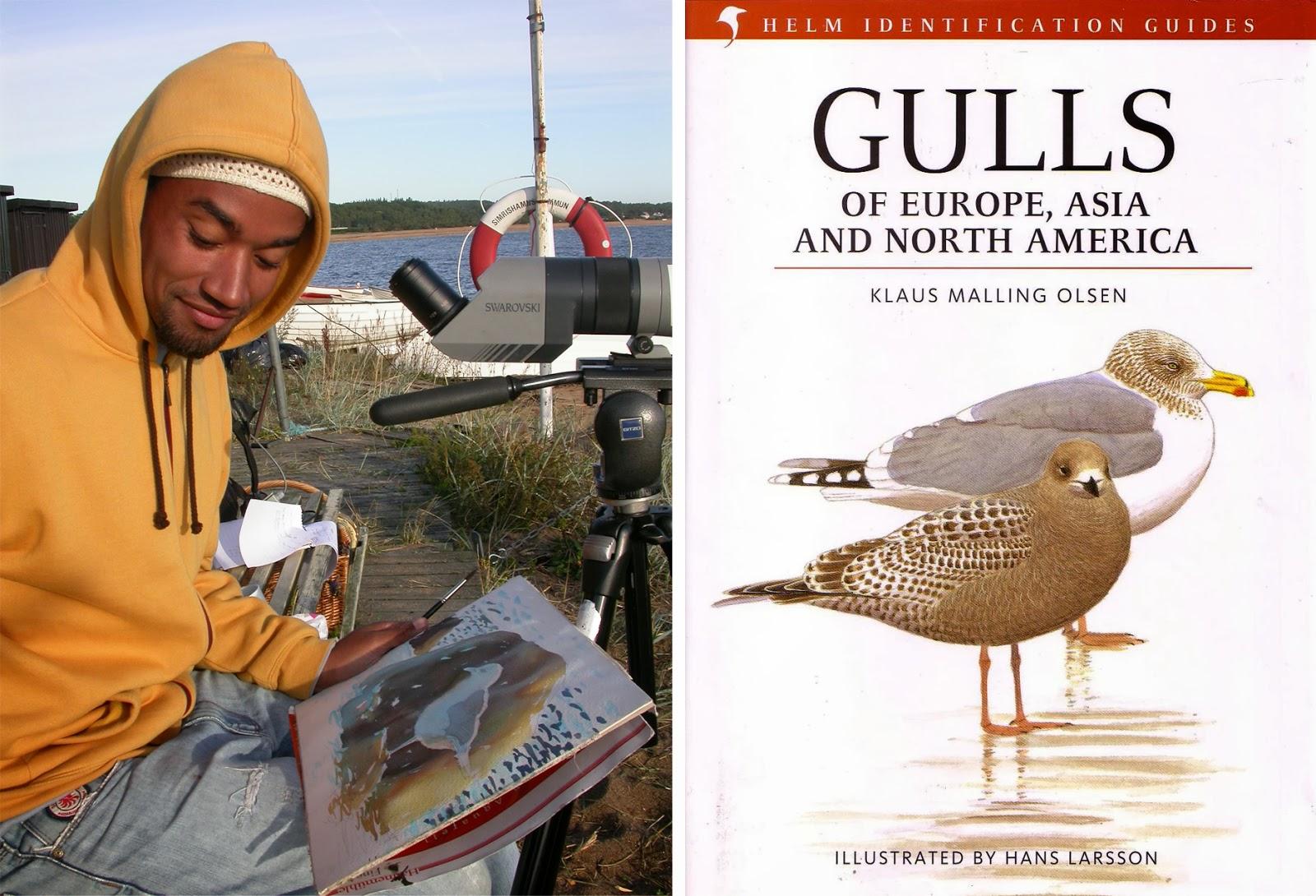 Hans Larsson painting Gulls.jpg