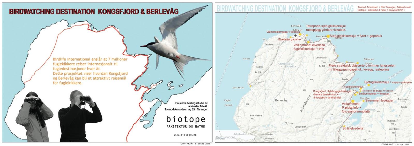 destination studies arctic norway TAmundsen Biotope.jpg