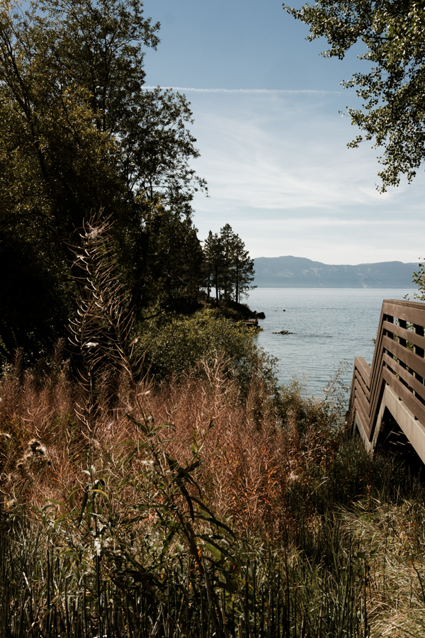 Pure Light Creative | Lake Tahoe Wedding-53.jpg