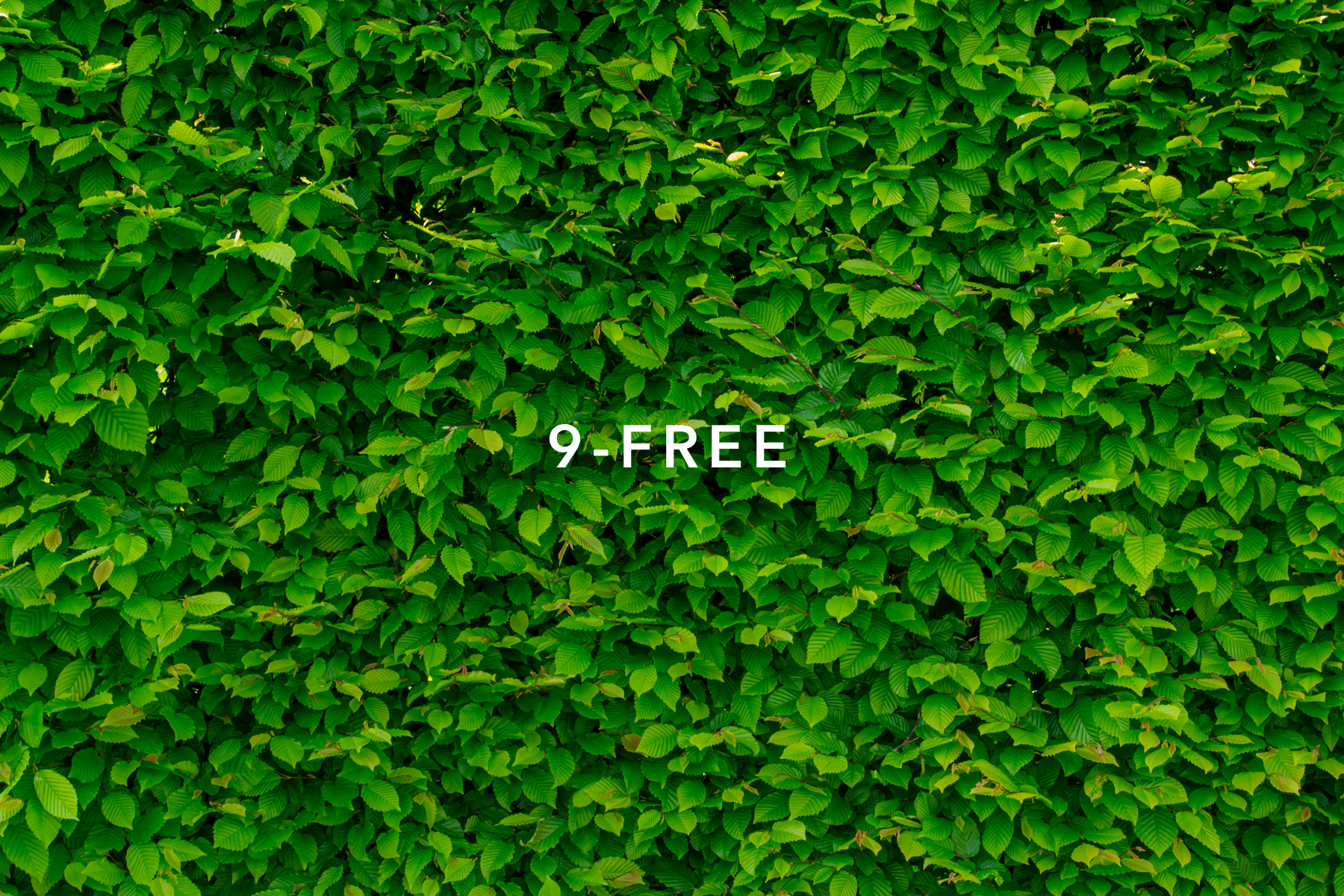 9-Free.png