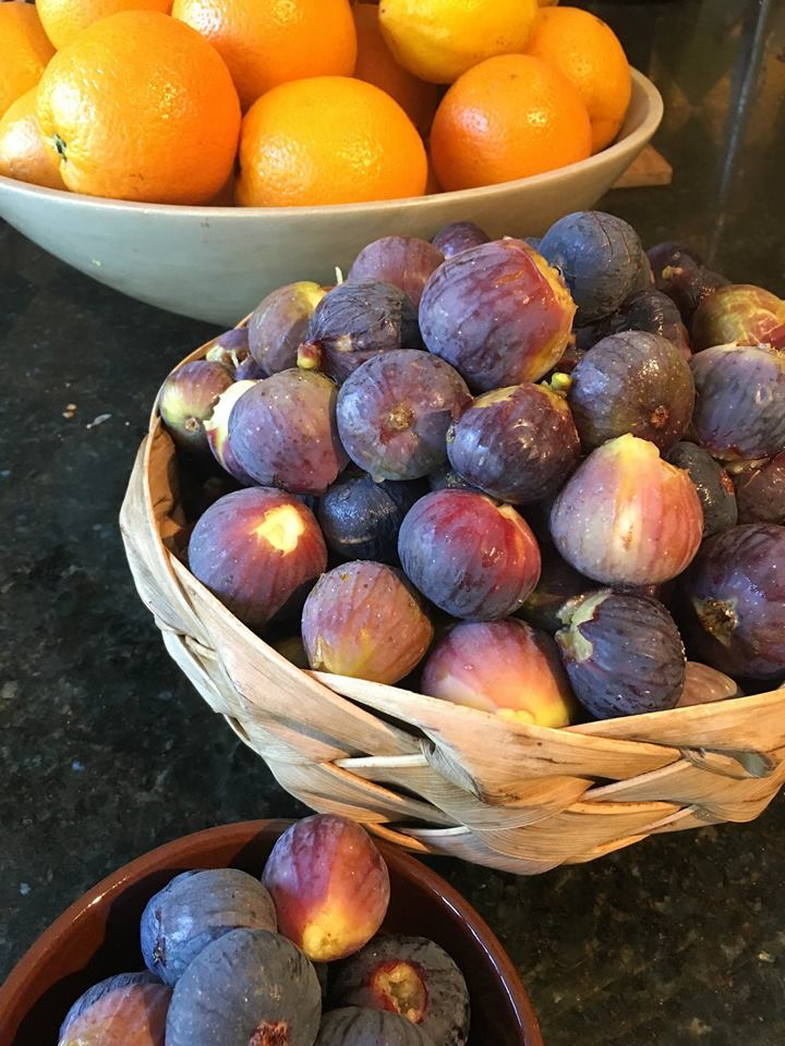 Home-made organic produce for guests at our private holiday letting near Ronda, Andalucia, Spain
