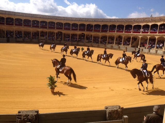 Cavalry displays at historical bullring close to our luxury villa rental in Ronda, Andalucia, Spain