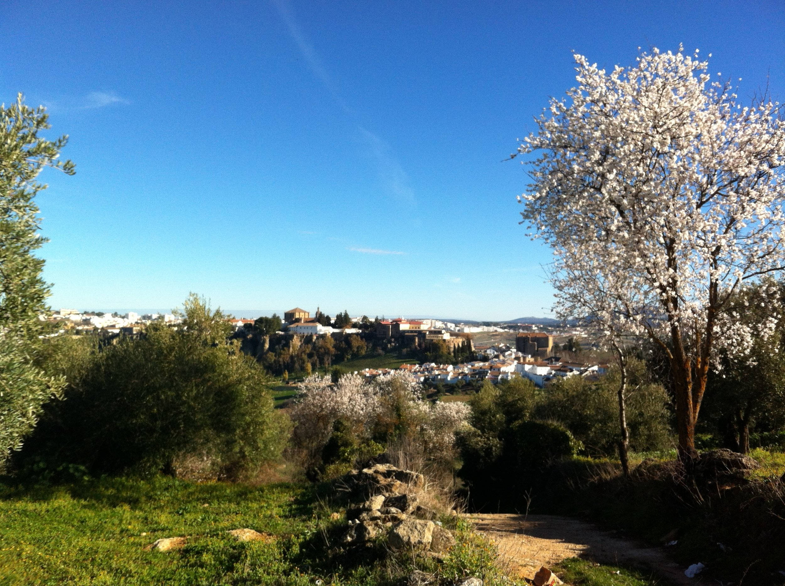 Almond Blossom and the Barrio: luxury villa rental in Spain