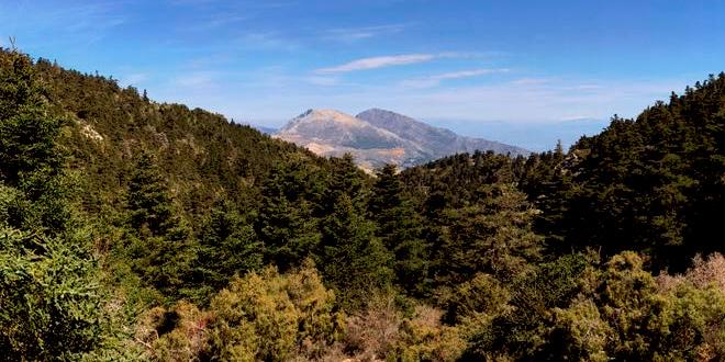 Sierra de las Nieves close to luxury villa rental in Ronda, Spain: La Cazalla de Ronda