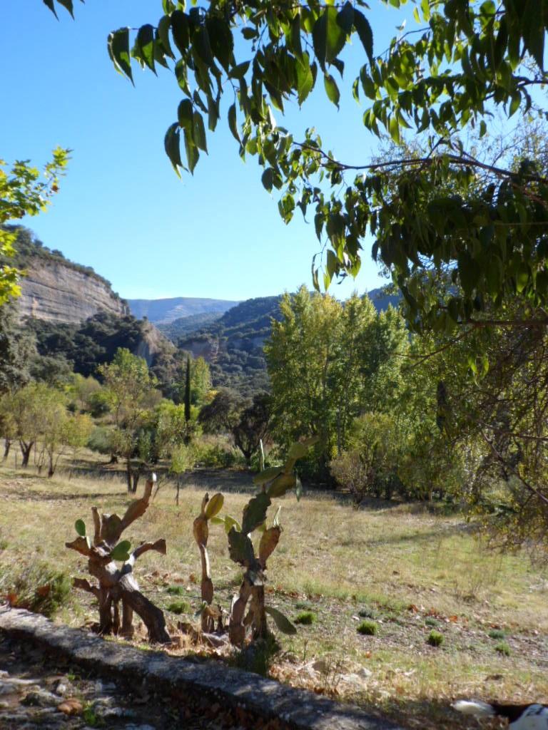 The cliffs of the Tajo del Abanico
