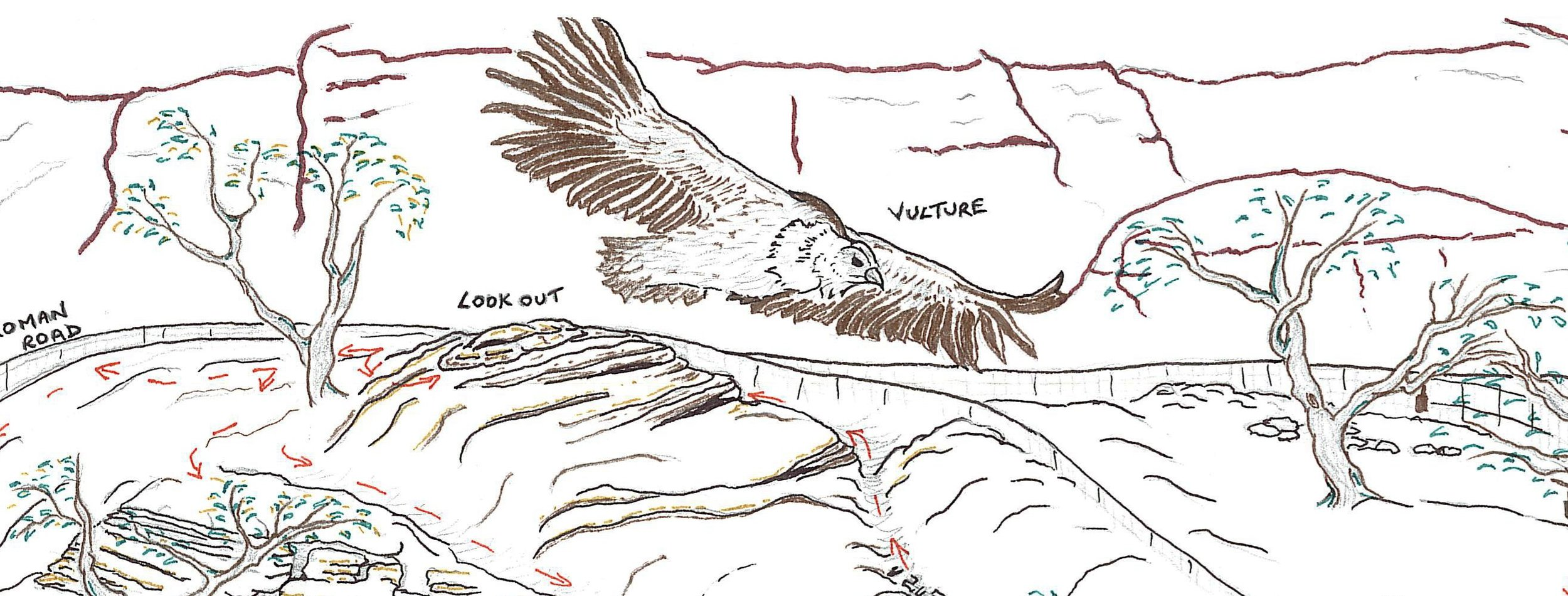 Vix's vulture from the nature trail map