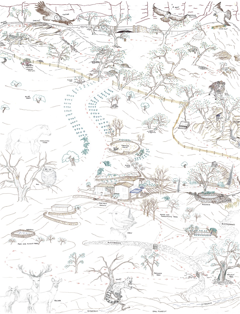 nature_and_wildlife_map_at_luxury_villa_ronda_andalusia_spain