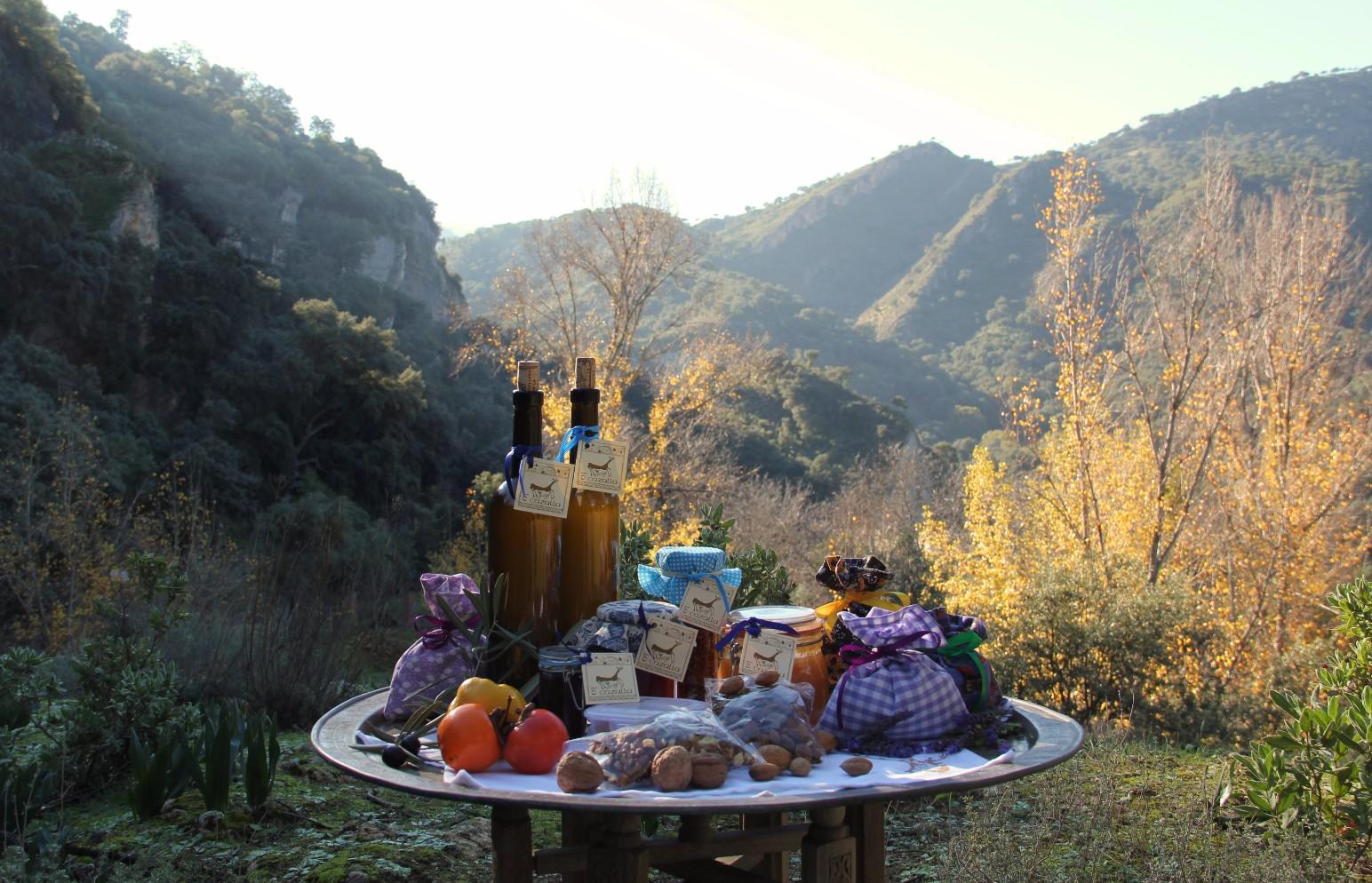little_luxuries_at_luxury_villa_rental_ronda_andalucia_spain