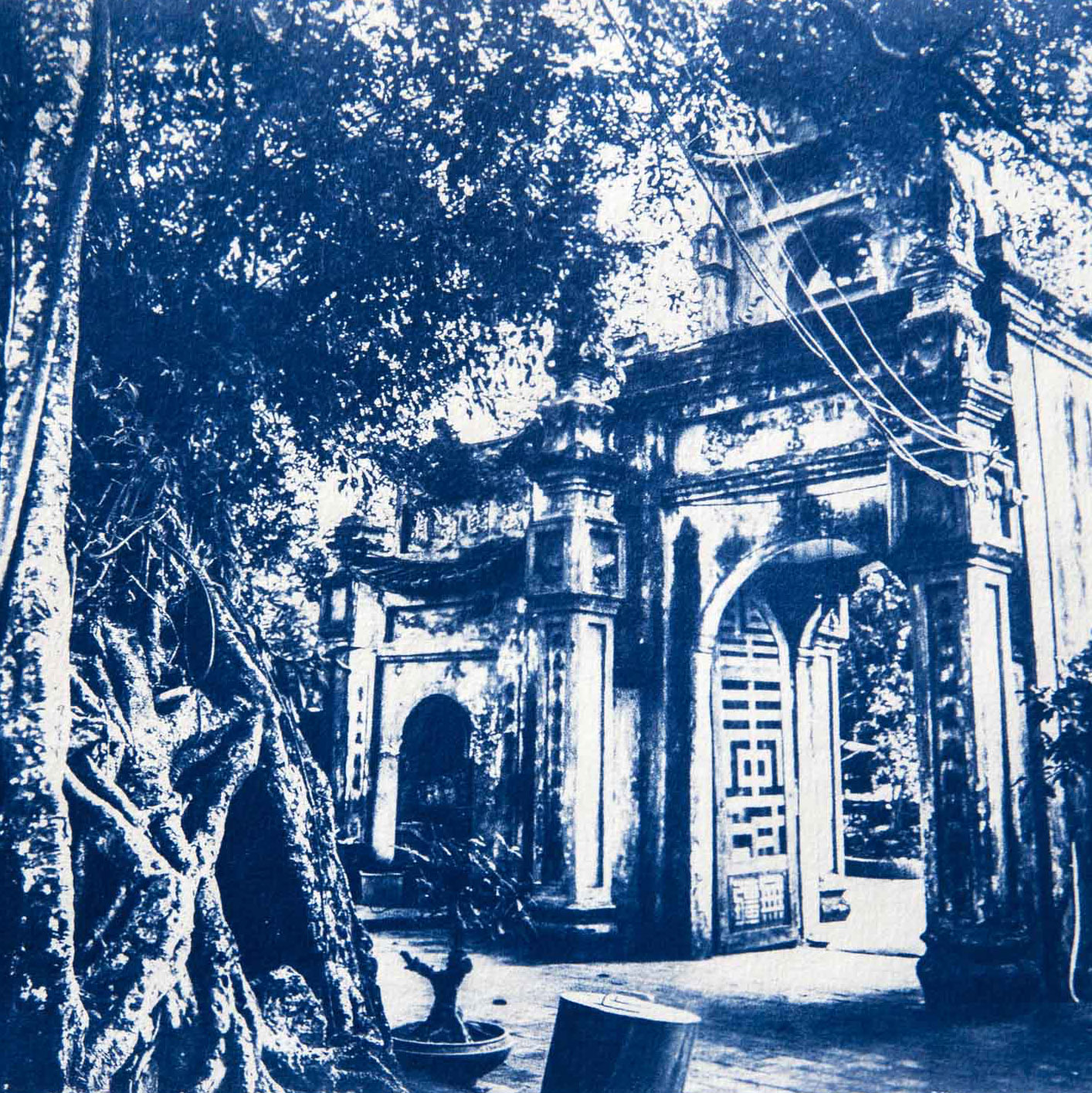 Vietnam in Cyanotype