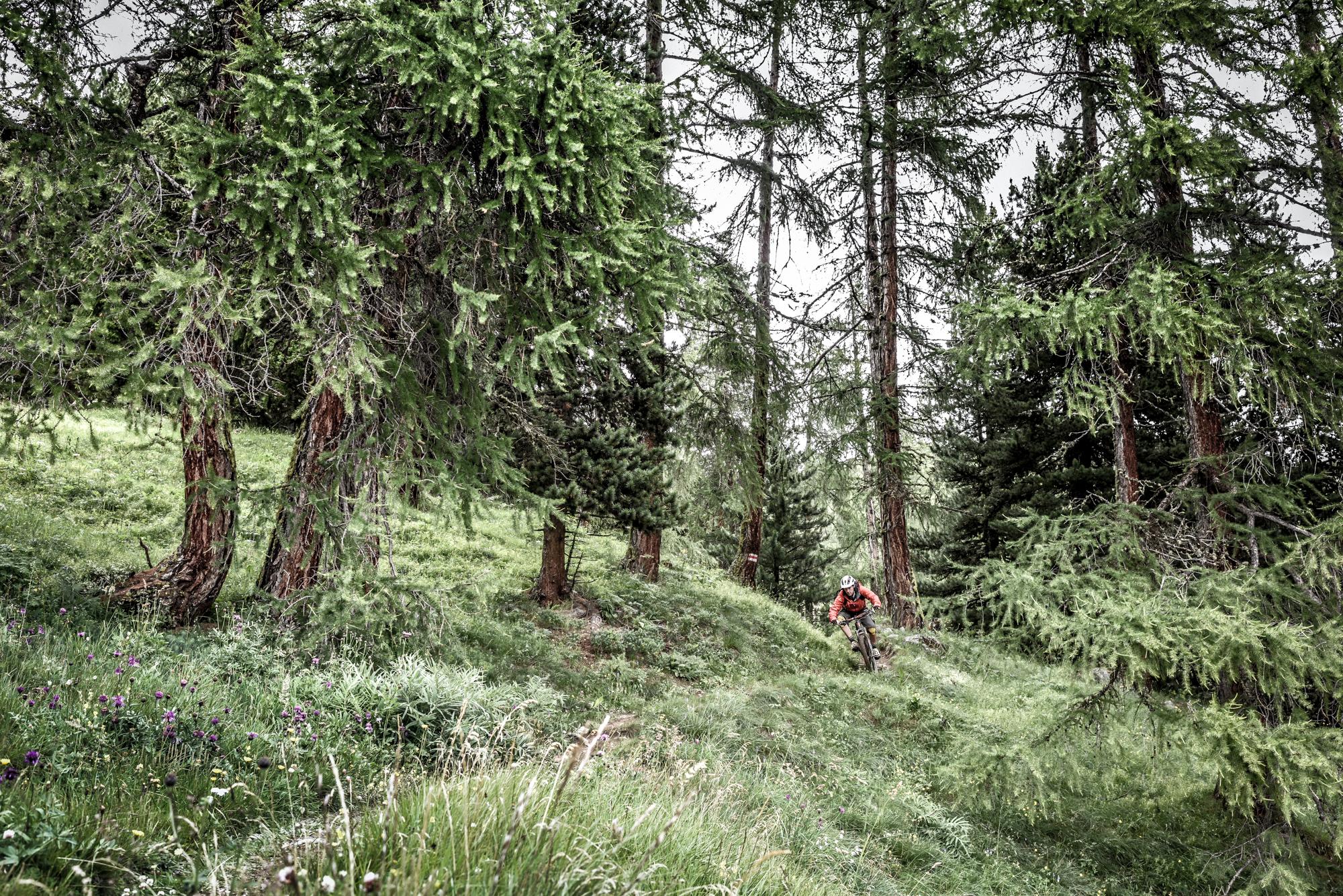 St_Moritz_020.jpg