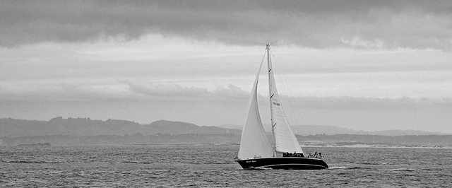 """Nathan Forget , """"Sails"""" Via Flickr,  Creative Commons  1/28/17"""