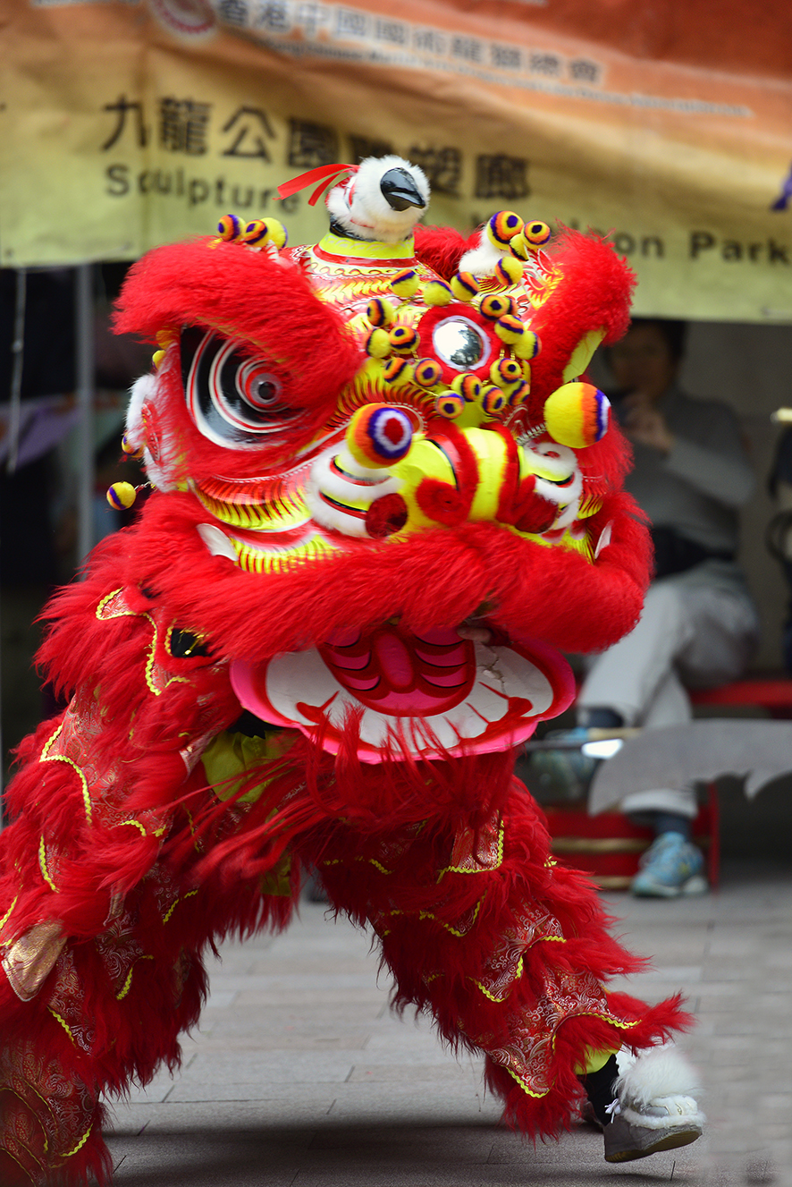 Lion Dancing costume similar to Caitlyn and Corey's in the book