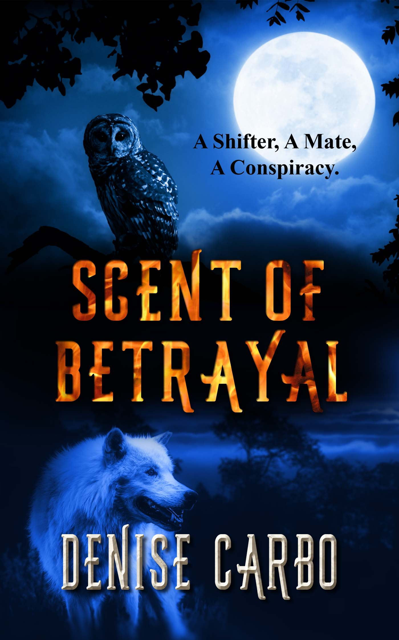 A Shifter, A Mate, A Conspiracy. - Wolf shifter Davis Campbell is on a mission. His job is to babysit a woman from a rival clan. He believes all he has to do is get her back to Scotland. What he doesn't figure on is her possibly being his mate.Bethany Leitner, an owl shifter, has been betrayed, attacked, framed, and left for dead. Trust in herself and others is hard to find. So when her self-appointed guardian begins to bark orders, she is ready to show her talons.