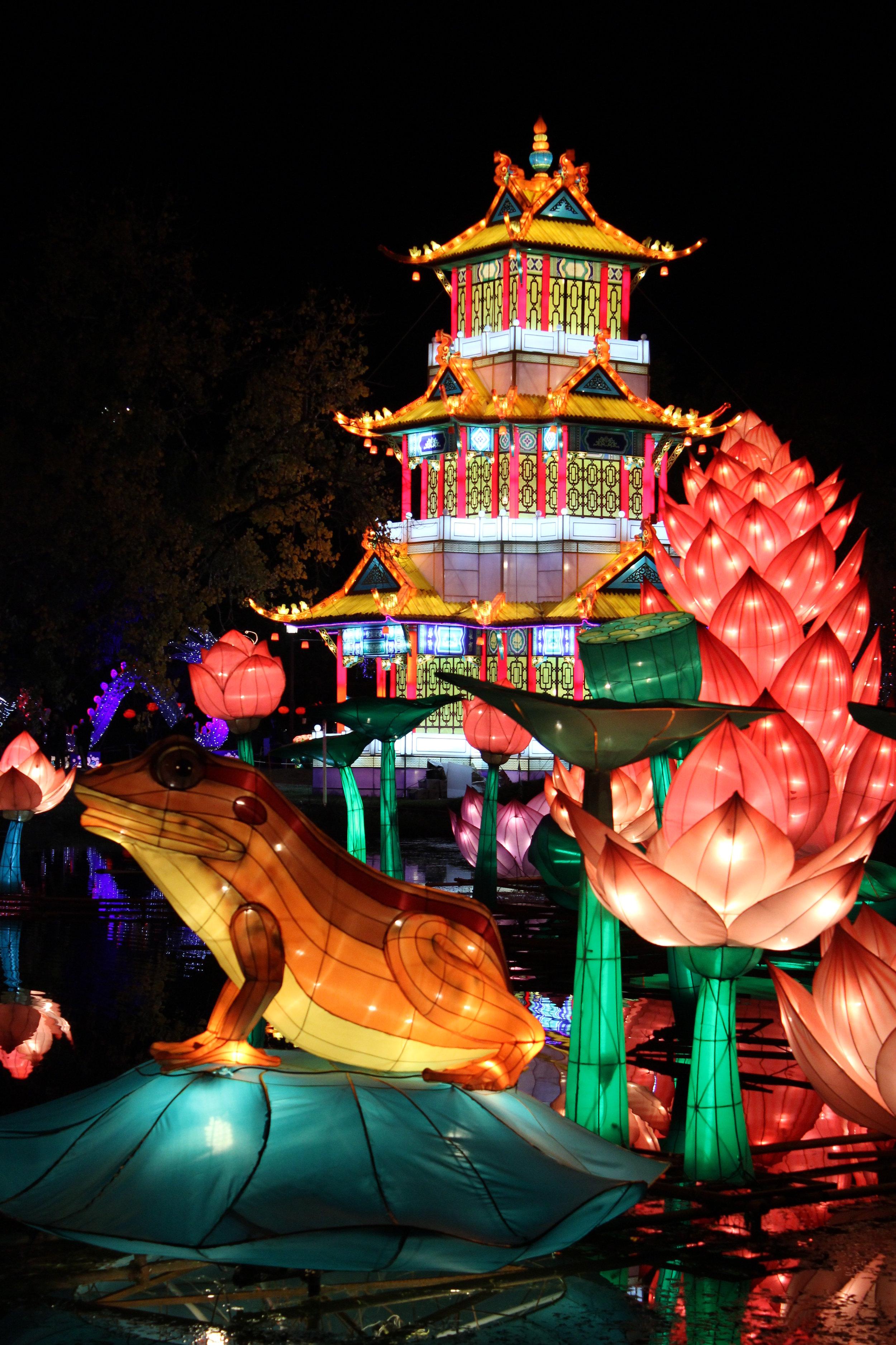 Chinese_Lanterns_ALP_2.JPG