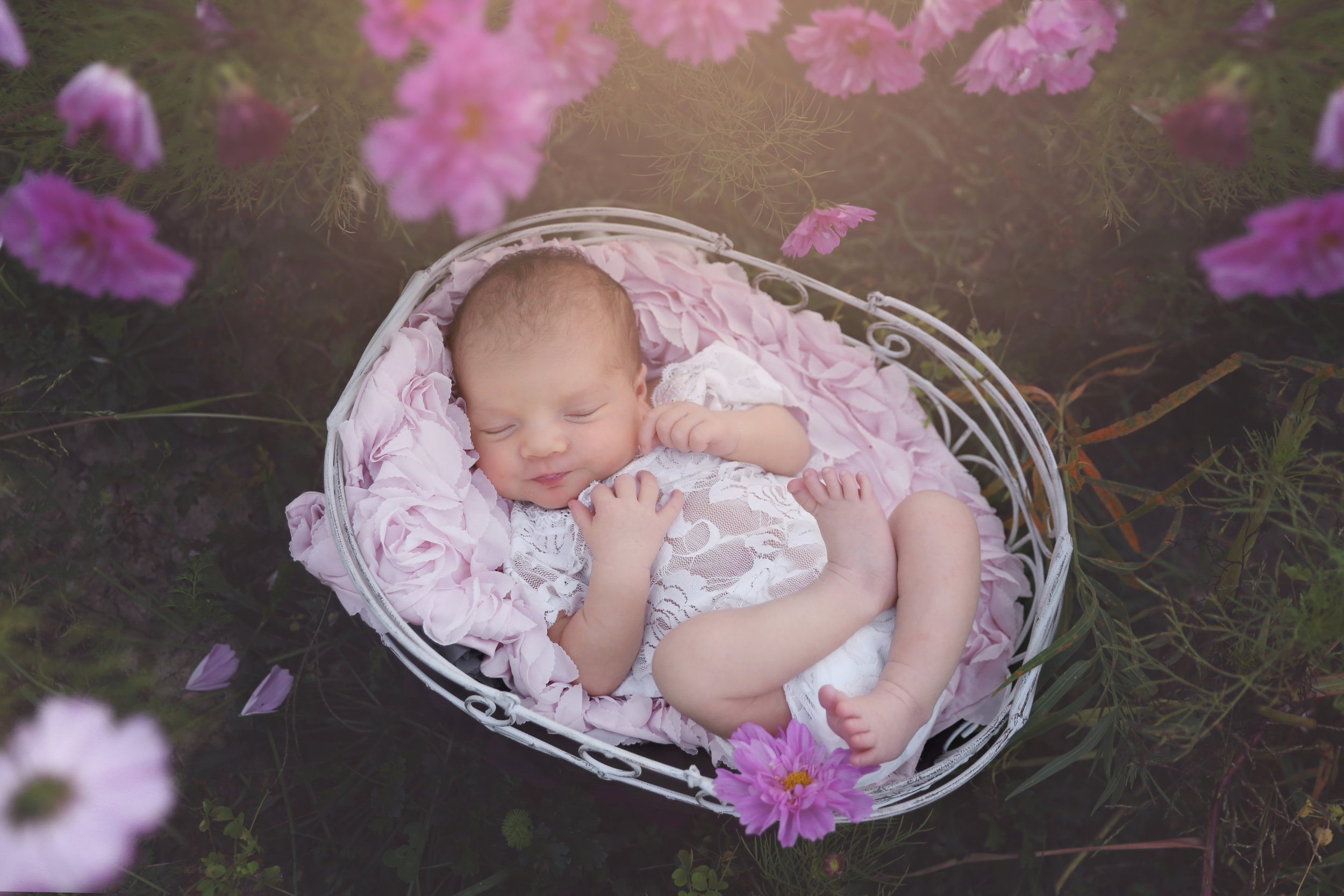 best newborn photographer in fredonia, ny