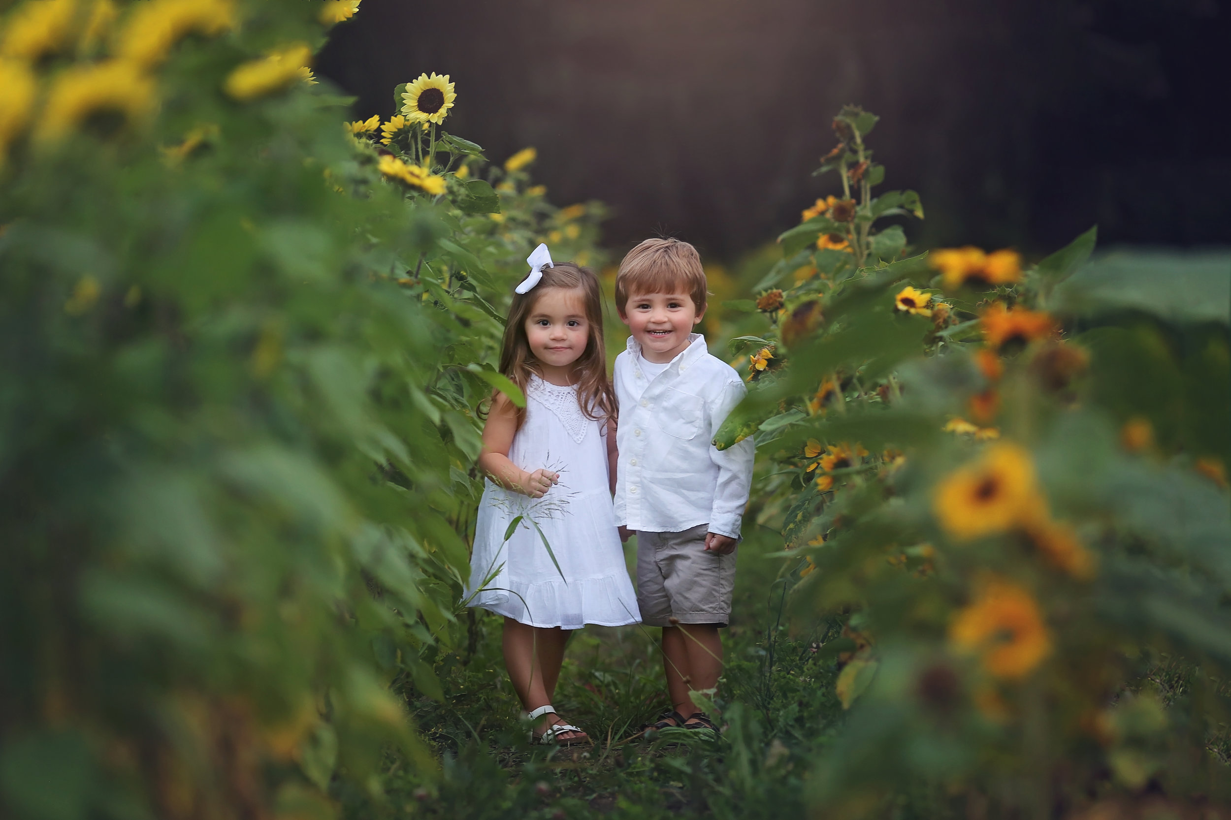 east aurora child photographer