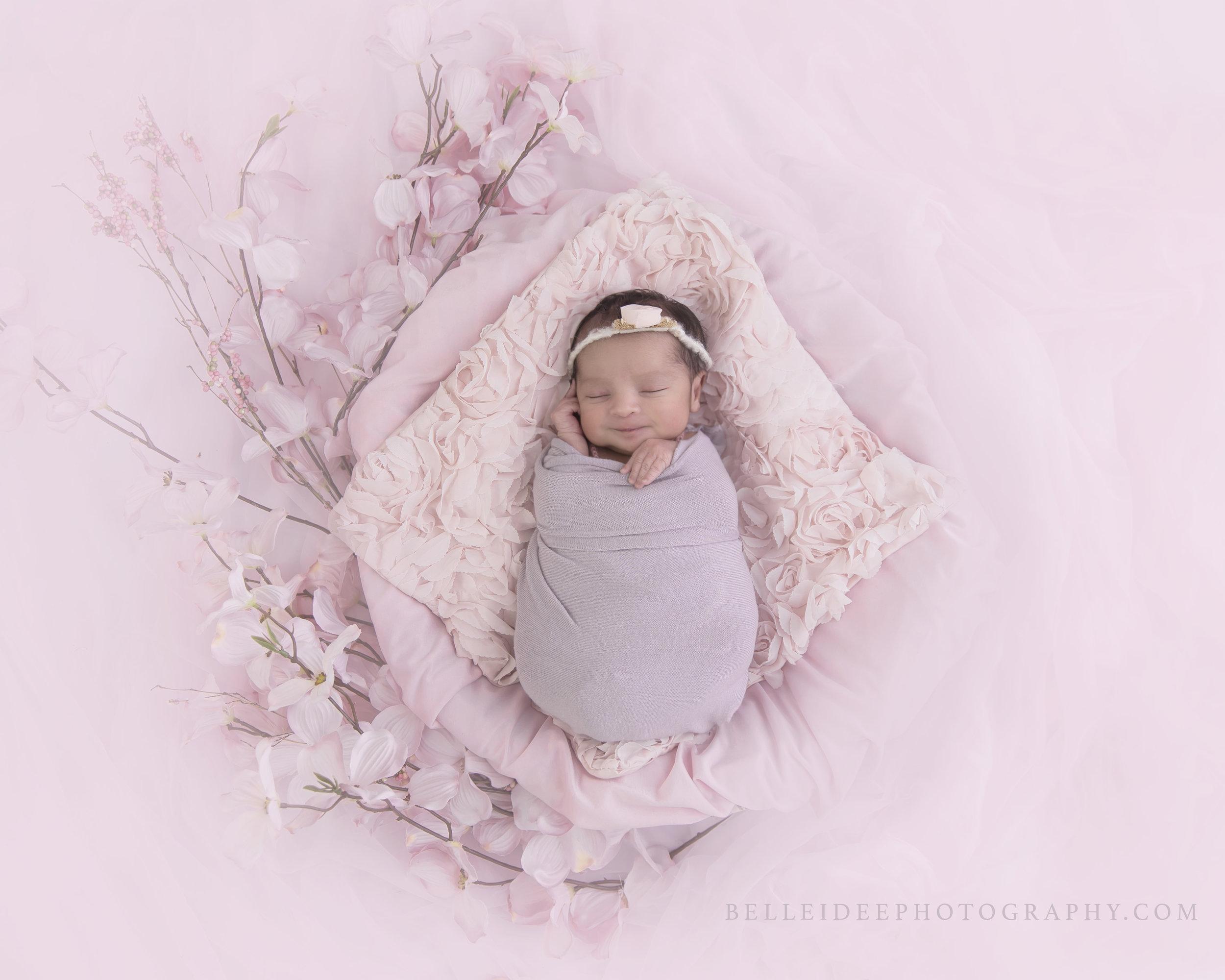 WNY Best Newborn Photographer