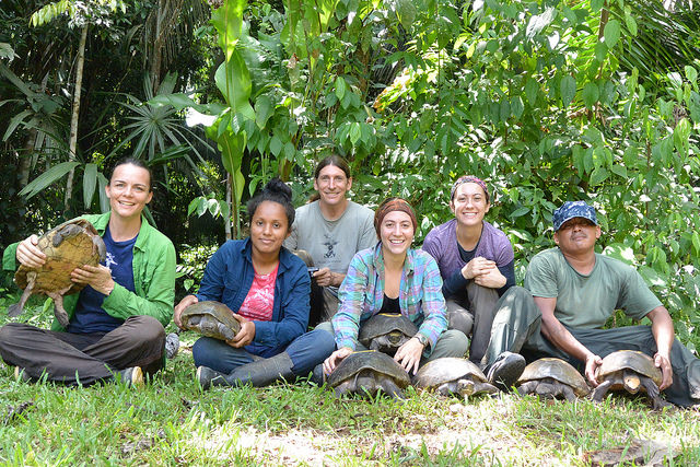 The amazing staff and hicatee turtles that we had the opportunity to get to know!
