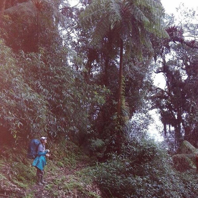 My place is in the rainforest. | Mi lugar está en la selva.  #cloudforest #yungas #sheexplores #femaletraveller #biology #biologia