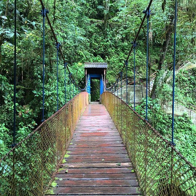 Exploration is freedom. | La exploración es libertad.  #peru #adventuretravel #yungas #bridges