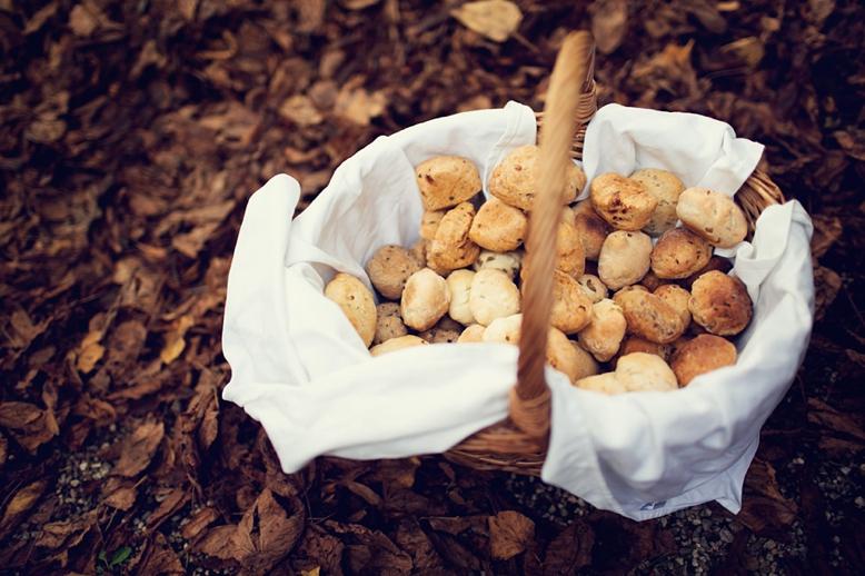 Autumn_Wedding_Salzburg_peachesmint_033.jpg