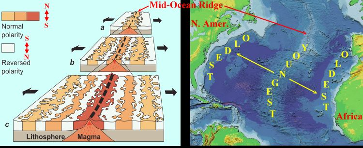 """Figure 5: Cartoon that shows the record of the orientation and strength of the Earth's magnetic field in volcanic rocks that were born along great rifts or cracks along the bottom of the oceans. That record is recorded in the minerals that of cooling ocean floor rock called basalt. This rock is formed along both sides, symmetrically, of a rift or crack in the Earth on the bottom of the ocean. The ocean moves away from that crack and the youngest rock is squeezed into the crack. As that young rock cools from liquid to solid, it records the orientation of the Earth's magnetic field. The darker colour browns show periods of time when the Earth's magnetic field was normal, like today.The white bands show periods of time when the Earth's magnetic field was opposite to today. The white bands record what geologists call """"reversed"""" polarity"""". This was one of the important lines of evidence to confirm that continents drifted around on the Earth's surface - continental drift!. Image from: http://www.regentsearth.com/ILLUSTRATED%20GLOSSARY/Paleomagnetism.htm"""