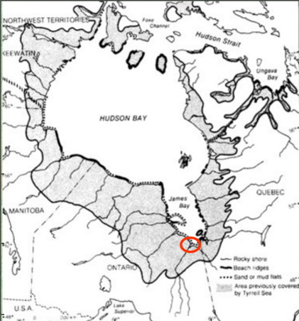 Figure 4: This image shows the inland extent of the Tyrrell Sea. The Tyrrell Sea was a inland, saltwater sea that covered the land adjacent to Hudson Bay and James Bay following the melting of the last ice sheet. The area covered by the Tyrrell Sea is marked in dark gray colour. The Tyrrell Sea flooded the land that had been pushed down by the weight of the last ice sheet that covered this area. Ignore the red circle. Image reproduced from the M.Sc. thesis of Melissa Dumbrell (2000): RIVERBANK CHARACTERISTICS AND STABILITY ALONG THE UPPER ESTUARINE REACHES OF THE MOOSE RIVER, NORTHERN ONTARIO, M.Sc. Thesis, University of Guelph, 243p. and reproduced from Martini, LP. (1986): Coastal Features of Canadian Inland Seas. In: Martini, I.P. (ed.), Canadian Inland Seas, Elsevier Science Publishers B.V., Amsterdam, pp. 117-142.