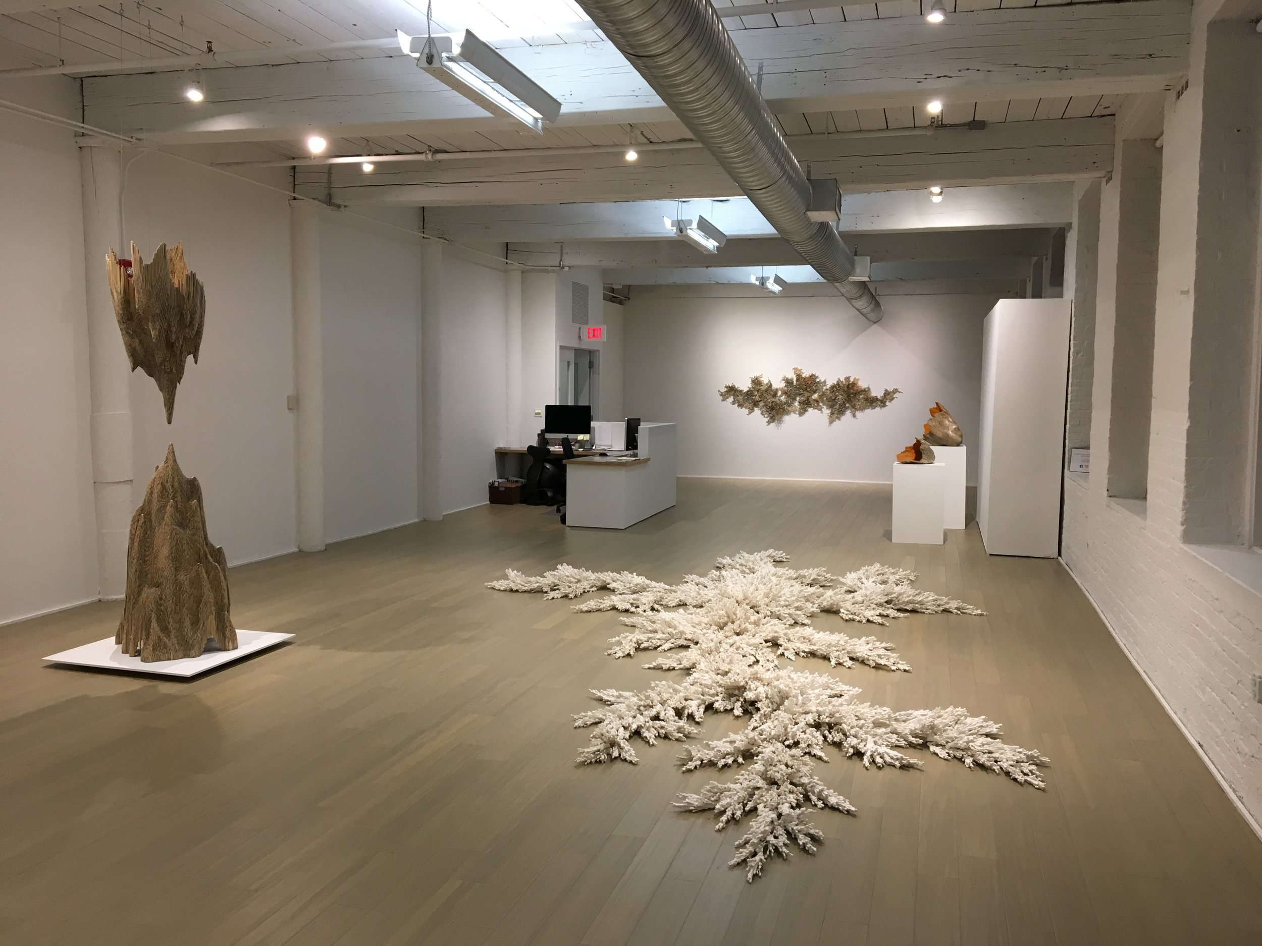 A unique installation for the show, Dendrite, is made of q-tips gathered together and covered in plaster.  The installation covered 22 feet of the gallery floorspace.