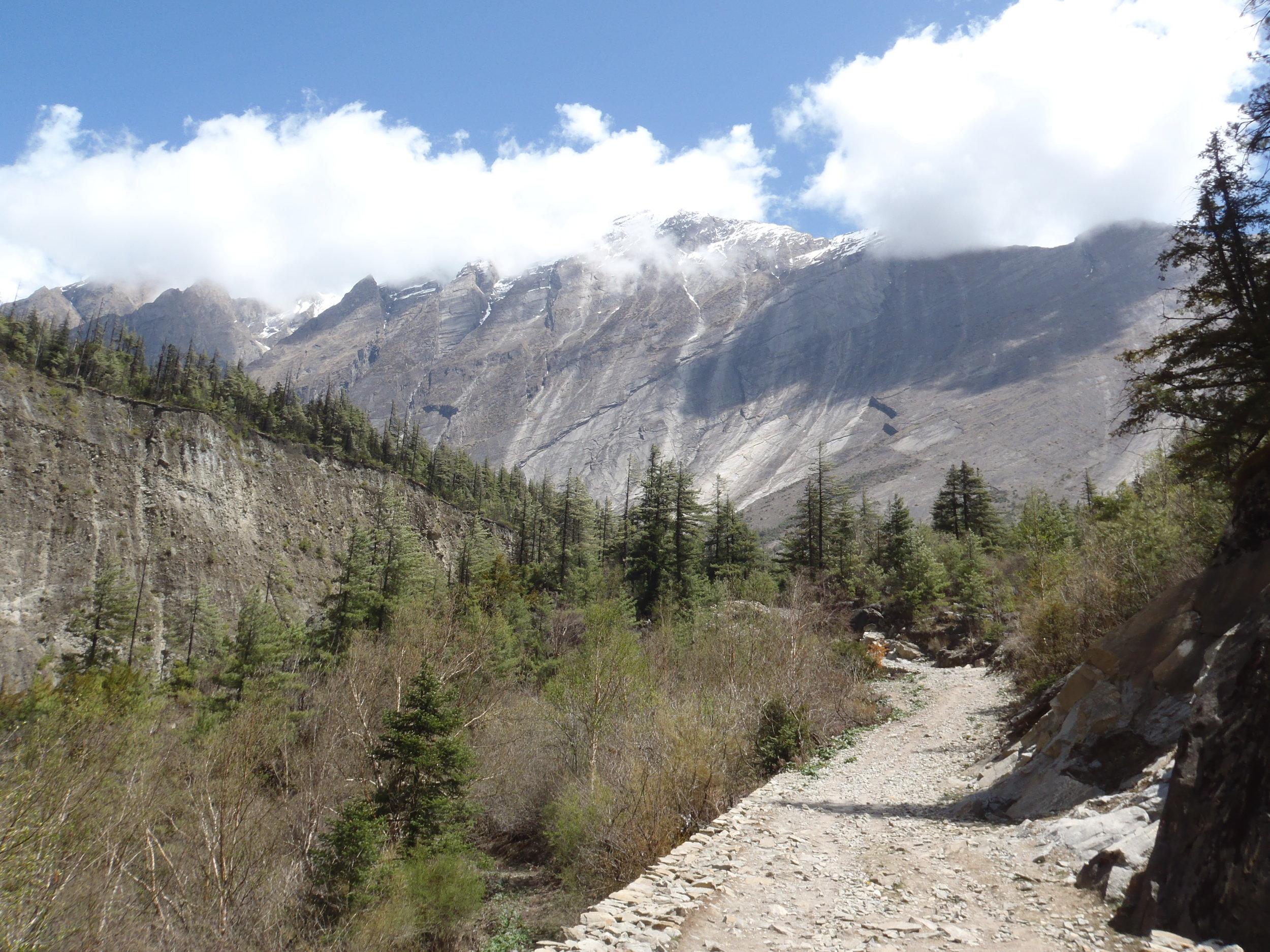 Sub-tropical lends to alpine terrain.