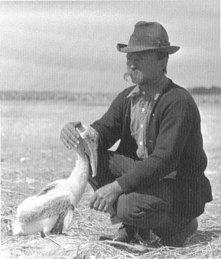 America's first game warden and wildlife manager,  Sebastian resident Paul Kroegel (1864-1948) with a  brown pelican at Pelican Island taken in 1907.